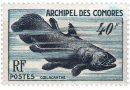 من هو أول من تعرف على سمكة السيلاكانت في جزر القمر ؟