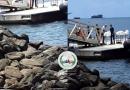 العثور على العديد من الغرقى قبالة جزيرة مايوت